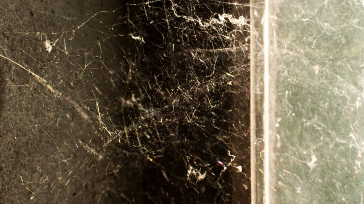 Tips and Tricks for Removing Spider Webs | Spider Control Experts