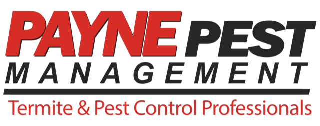 Services - Pest Control company in San Diego, Los Angeles and Orange County - Payne Pest Management